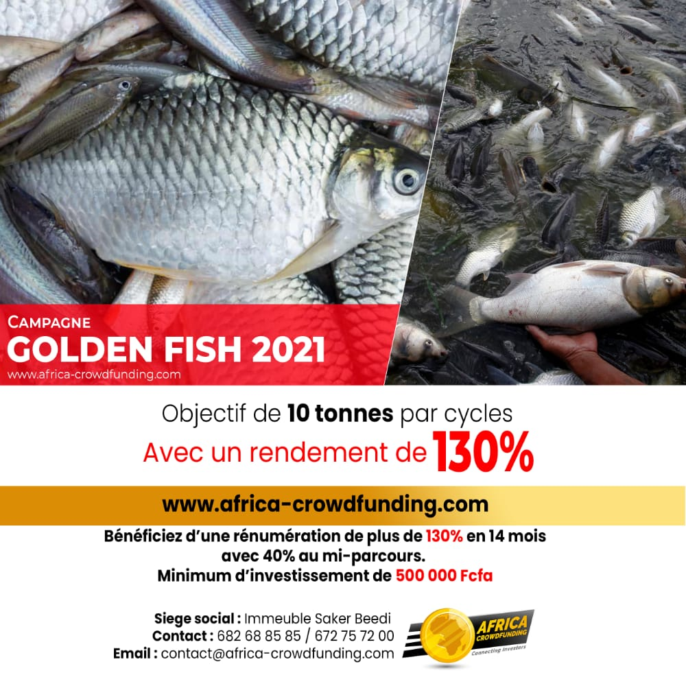 Campagne Golden Fish 2021